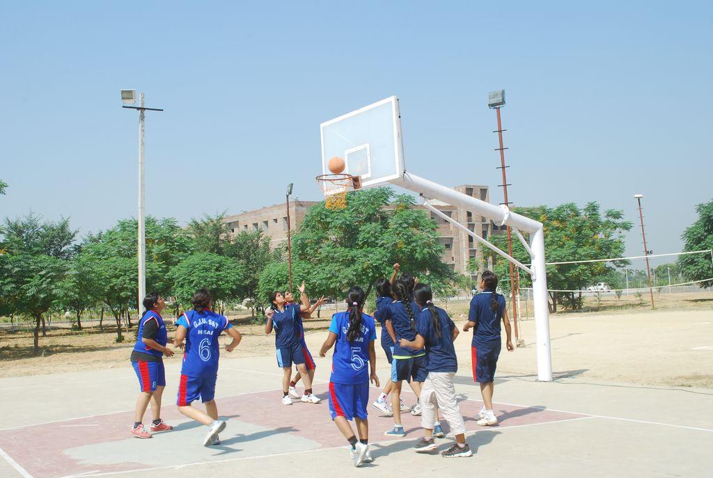 Basketball -2