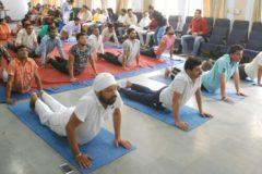 Celebrate International Yoga Day at JCDV