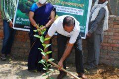 Tree plantation on world Environment day 05-06-2021